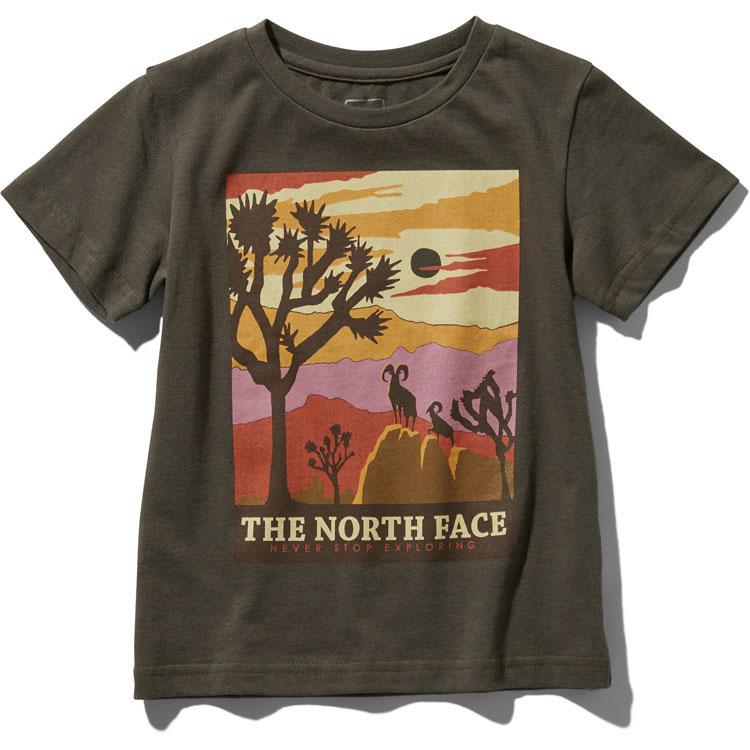 画像1:  【SALE20%OFF!!】 THE NORTH FACE(ザ・ノースフェイス) S/S GRAPHIC  TEE (ショートスリーブグラフィックティー) 【NT/ニュートープ】【キッズ/ベビー】【80-140cm】 (1)